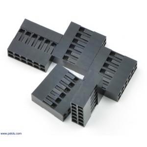 Conector DuPont 2x6 (5 unidades)